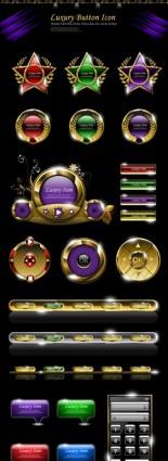 Luxury web button shiny vector