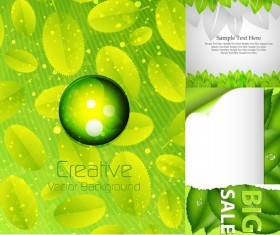 Fresh green element background shiny vector