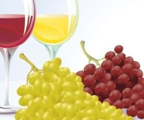 Grape and wine set vector