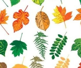 Different colorful leaves set vector