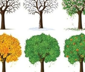Trees different seasons vectors