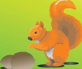 Cute Squirrel vector