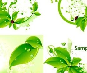 Fresh green leaves and ladybirds background vector