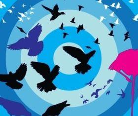 Birds Collection creative vector