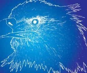Eagle Sketch set vector