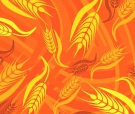 Bright golden wheat background vectors graphic