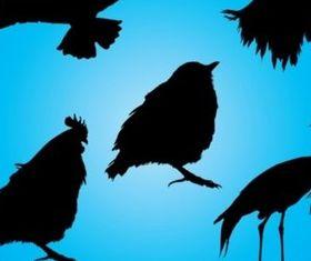 Birds Silhouettes vector