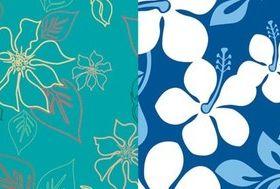 Flowers fresh and elegant plant background set vector