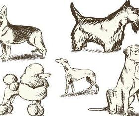 Different Vintage Dogs art set vector