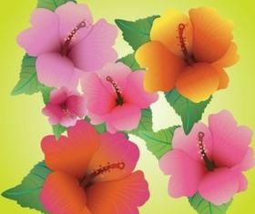 Hibiscus Vectors background