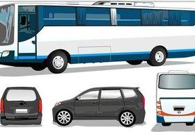 Color Buses design vectors