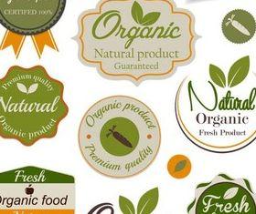 Natural Food Labels vectors
