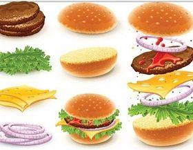Ingredients Sandwiches vectors graphic