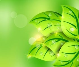 Fresh green leaves vectors graphics