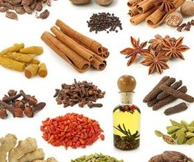 Spices graphic vector