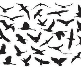 Silhouettes Birds vectors material
