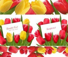 Bright tulip border vector