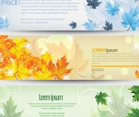 Colorful maple banner background vector