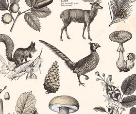 wild animal and plants design vectors