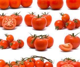 Solar Tomatoes vector graphics