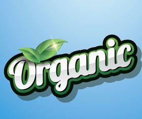 Organic elements design vectors