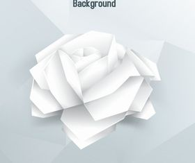 White rose background design vectors