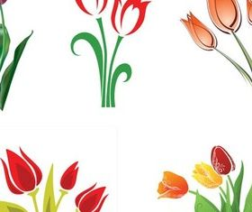 Tulips graphic vector