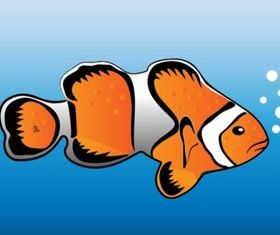 Clown Fish vector design