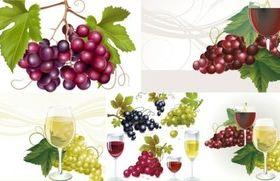 shiny grape with wine shiny vector
