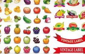 Delicious fruits and label vector