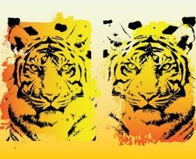 Tigers Graphics set vector