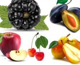 Different berries mix design vector