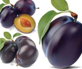 Purple berries design vector