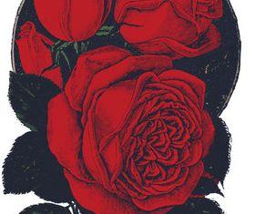 Rose vintage vector material