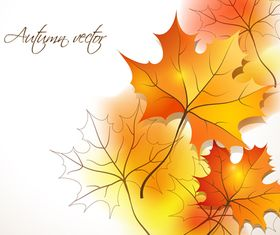 Autumn leaves background 1 vector