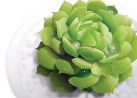 Green plants vector