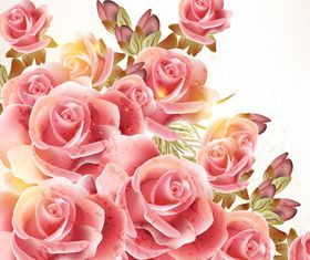 Pink rose background vector graphics