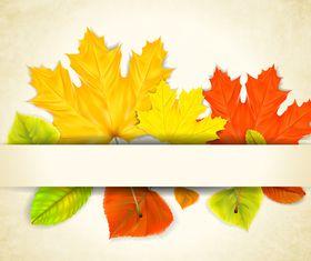 Autumn Leaf theme background 3 vector