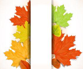Autumn Leaf theme background 4 vector
