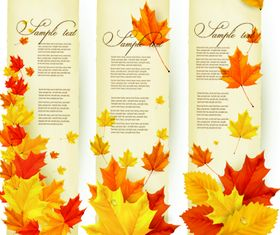 Autumn Leaves banner vector graphics
