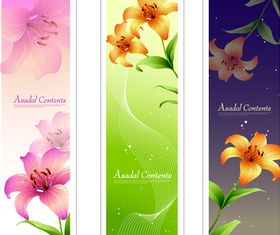 Lily banner 1 vector set