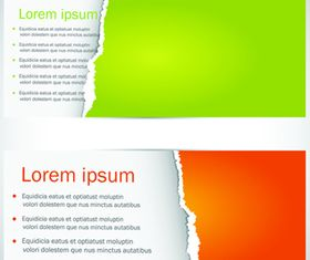 Color Torn paper banner vector graphics