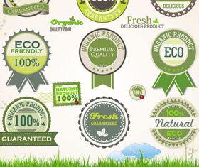 Eco natural labels 3 vector