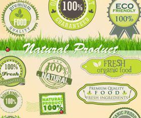 Eco natural labels 4 vector