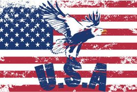 American Flag 4 vector