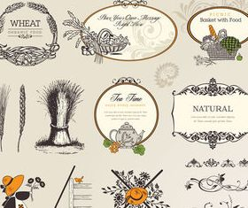 Green food label and decoration 2 vector