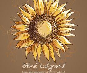 Vintage Sunflower background 1 vector