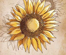 Vintage Sunflower background 3 vector