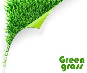 Vivid Green grass 1 vector
