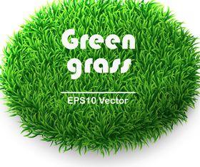 Vivid Green grass 2 vector